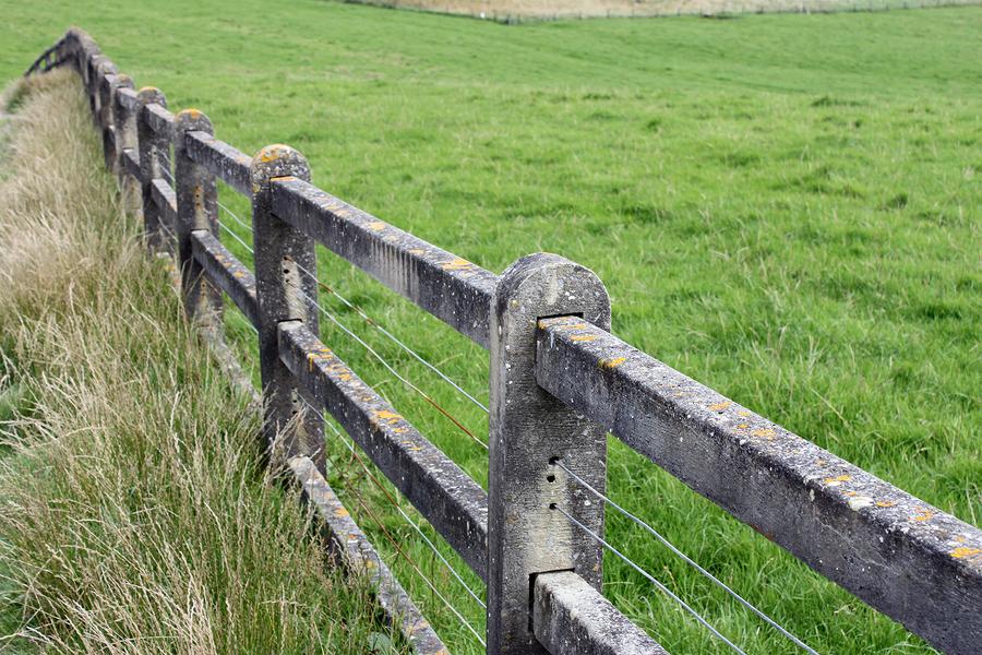 bigstockphoto.com grass greener