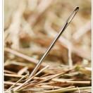 needle-haystack-bigstock-6380917